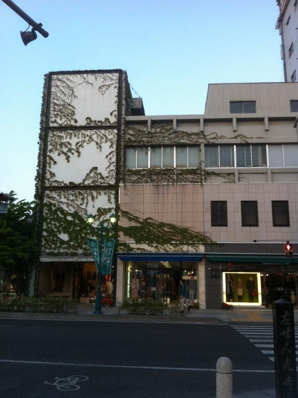 Green wall, Matsumoto, Japan, (c) MMD 2013