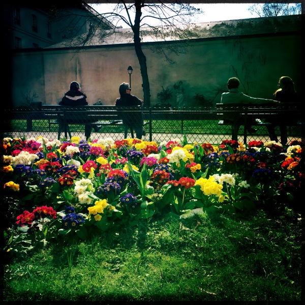 Parisian Flowers, (c) MMD 2014