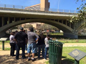 People looking at the Congress Avenue Bridge, (c) MMD