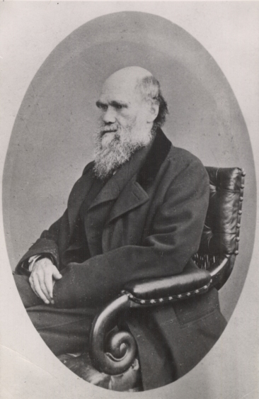 Charles_Darwin_photograph_by_Ernest_Edwards,_1867